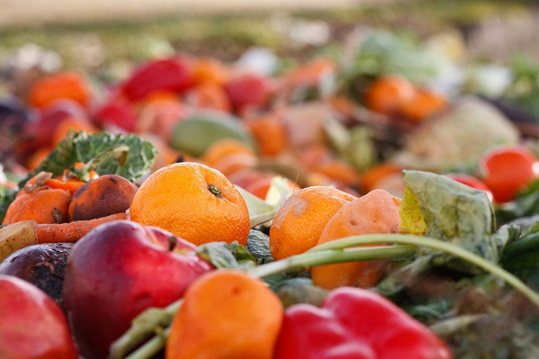 No se garantiza la seguridad de los alimentos cuando se utilizan residuos de alimentos. Foto: Dreamstime