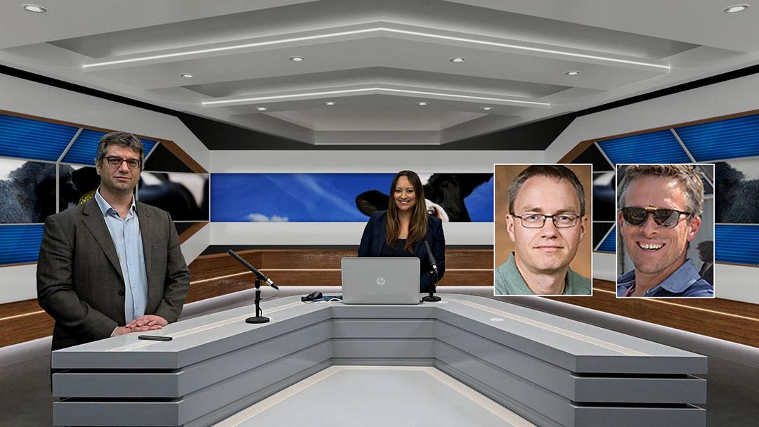 La alineación de la izquierda: Dr. Valentin Nenov (gerente global de rumiantes, Phileo de Lesaffre), Zana van Dijk (editora de Dairy Global), Dr. Albert De Vries (Universidad de Florida), Dr. Jo Leroy (Universidad de Amberes). Foto: Webcast de la empresa