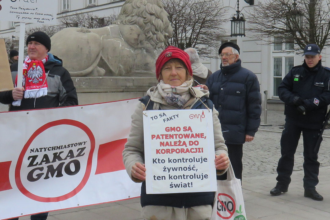 La prohibición del uso de OGM cuenta con un amplio apoyo en Polonia. Foto: Vladislav Vorotnikov