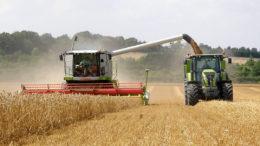 Hay alrededor de 4,8 millones de hectáreas de tierra utilizada para la agricultura en la República de Irlanda, incluidas 368.000 hectáreas dedicadas a la producción agrícola cultivadas por poco más de 7.000 agricultores de labranza. Foto: Chris McCullough