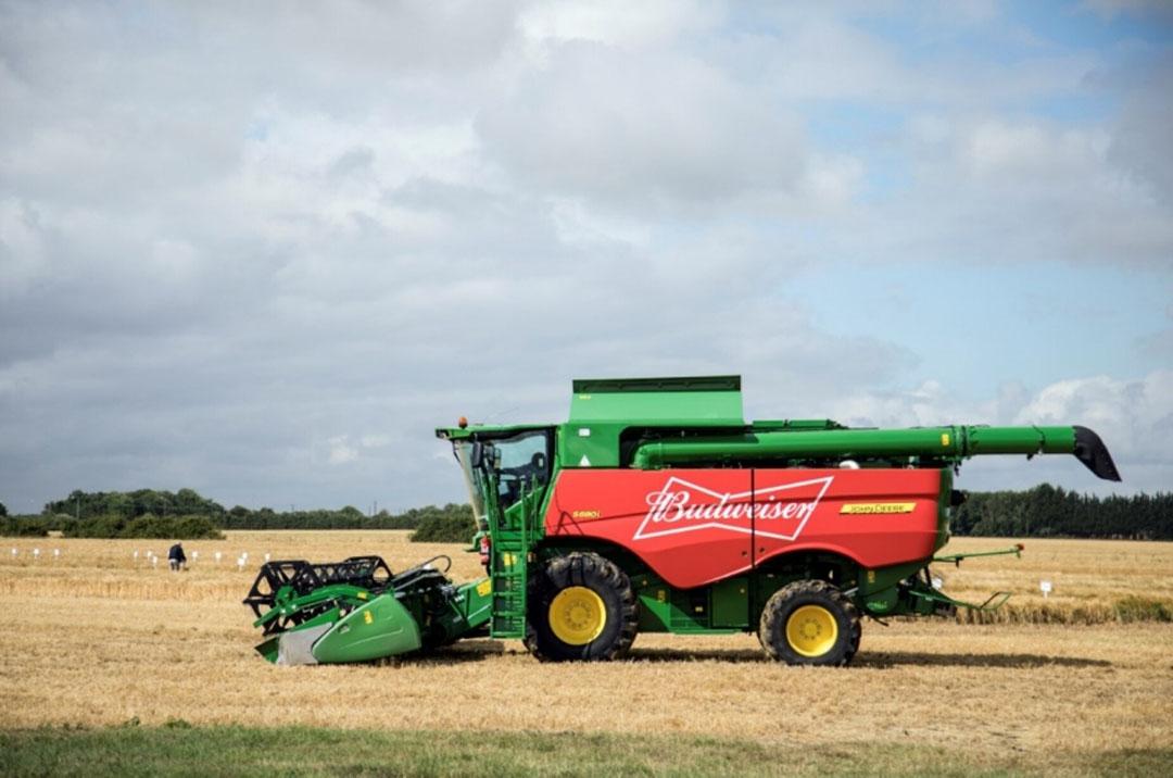 Budweiser Brewing Group UK&I obtiene el 100% de sus necesidades de cebada en el Reino Unido de los granjeros locales. Foto: Budweiser