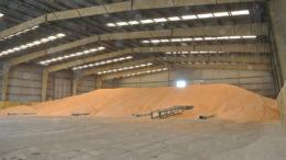 El arancel sobre las importaciones de maíz procedentes de fuera del Mercosur es actualmente del 8%, pero el Brasil suspenderá los aranceles de importación hasta finales de marzo de 2021. Foto: fbvriz