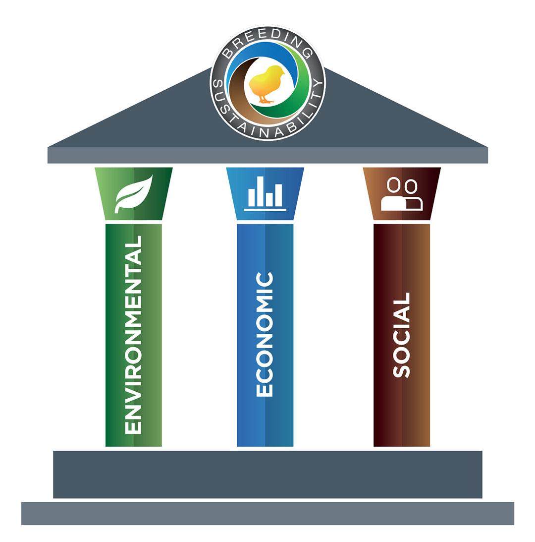 Los tres pilares de la sostenibilidad son el ambiental, el económico y el social. Aviagen los apoya para ayudar a crear un futuro sostenible para la industria avícola mundial. Foto: Aviagen