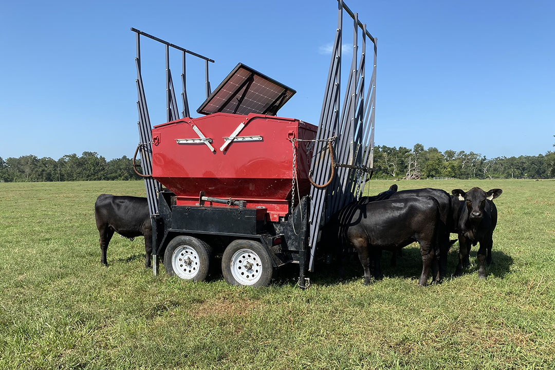La máquina de precisión de alimentación de ganado eléctrica y portátil, el Super SmartFeed. Foto: Laboratorio del Dr. Nicolás Dilorenzo
