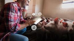 La CCPA depende de un acercamiento seguro desde el alimento hasta la granja. Foto: CCPA