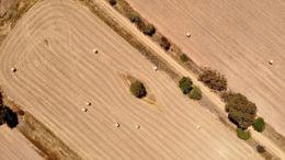 Las lluvias han puesto fin a la sequía en el este de Australia. Foto: Acmclellan