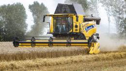 El reciente y rápido aumento de los precios de los cereales, y en particular de los precios del maíz, parece haberse detenido. Sin embargo, el grano sigue siendo bastante caro. Foto: Ronald Hissink