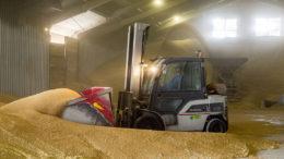 El gobierno ruso ha emitido una previsión bastante optimista para la próxima cosecha de cereales. Foto: Koos Groenewold
