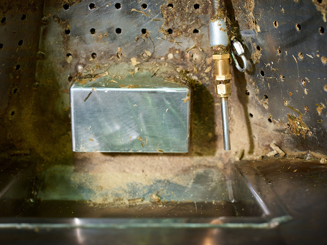 Una balanza y un sensor de metano miden exactamente la cantidad de comida de una vaca y la cantidad de metano que exhala. Foto: Universidad e Investigación de Wageningen