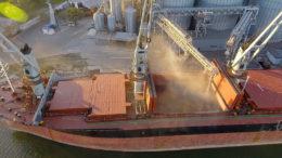 Rusia restringe las exportaciones de grano. Foto: Federación Rusa