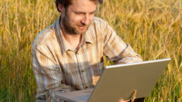Actualización semanal de las noticias de la industria de los piensos. Foto: Shutterstock