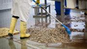 Tanto las capturas accidentales en el mar como los residuos tras su procesamiento en tierra se desechan, desperdiciando nutrientes y provocando la contaminación del medio ambiente. Foto: ANP
