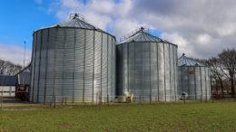 Muchos problemas pueden aliviarse si el pienso se almacena en silos. Foto: Bert Jansen