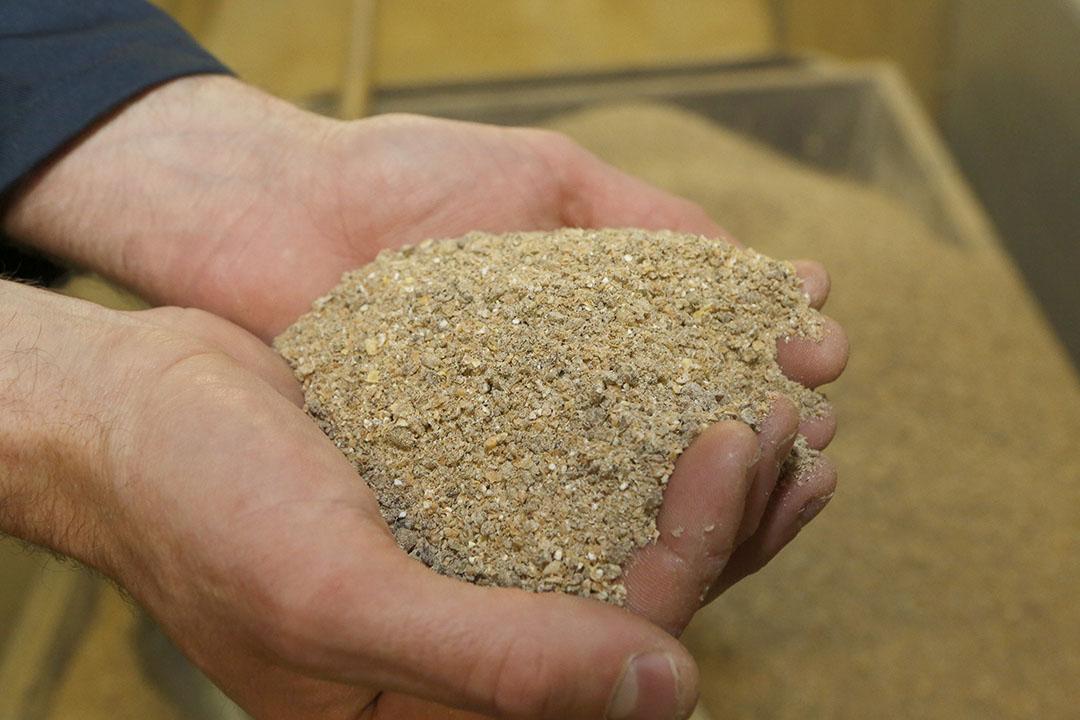 Para reducir los niveles de Cu en el estiércol, es necesario evaluar la biodisponibilidad del Cu en los principales ingredientes de los piensos, como la soja, el trigo y el maíz. Foto: Henk Riswick